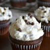 Chocolate Cupcakes with Chocolate Chip Frosting
